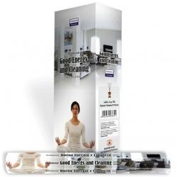 Darshan Good Energy And Cleaning wierook (per doos)