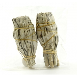 2 mini White Sage smudge sticks
